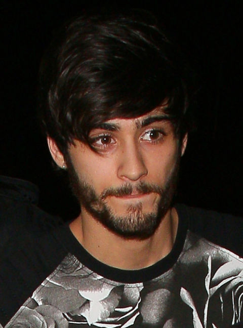 ZAYN MALIK'S HAIRVOLUTION: FROM BADGER QUIFF TO BOUNCY ...