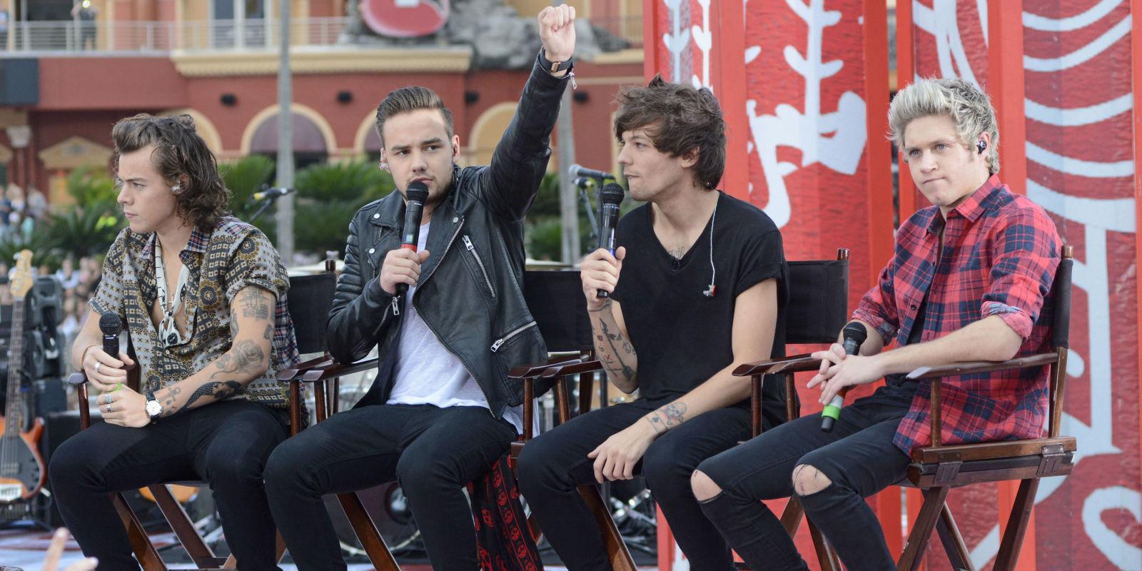 One Direction Split, Bandmates During Hiatus: Personal ...